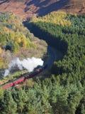 Järnväg med ångadrevet som spolar dess väg till och med en skogsbevuxen dal Royaltyfria Bilder