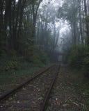 Järnväg på dimman Arkivfoto