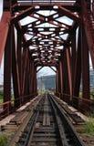 järnväg siberiantrans. Royaltyfri Fotografi