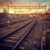 Järnväg soluppgång för mossaNorge solnedgång Arkivbild