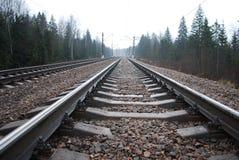 Järnväg stångpasserande bland trät Royaltyfri Fotografi