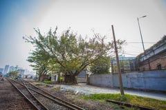 järnväg station Arkivfoton