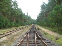 Järnväg strömbrytareändring Royaltyfri Foto
