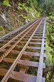 järnväg strahan tasmania vildmark Arkivfoto
