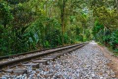 Järnväg till och med skog Arkivbild