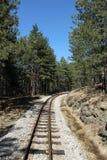 Järnväg till och med skogen Arkivfoton