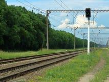 Järnväg trafikljus - grön väg royaltyfri foto