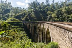 järnväg väg och olika träd med grön lövverk i Asien Fotografering för Bildbyråer