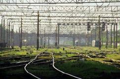 Järnvägar, gräs och kablar Arkivbilder