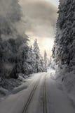 Järnvägar i den snöig skogen på solnedgången royaltyfria foton