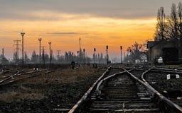 Järnvägar i solnedgången Royaltyfri Bild
