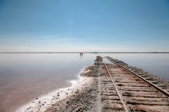 Järnvägar i vattnet royaltyfri foto