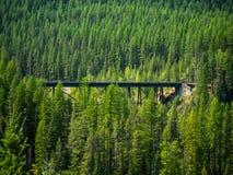 Järnvägbock i nationalskog Arkivfoto