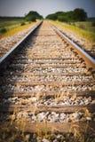 Järnvägen järnväg, drevspår, gräsplan betar, den selektiva fokusen Arkivbilder