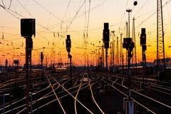 Järnvägen spårar på solnedgången Arkivfoto