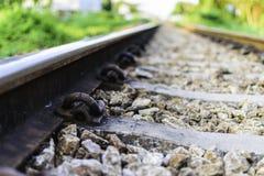 Järnväggrov spik, stånglängsgående stödbjälke och järnväg Royaltyfri Foto