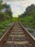 Järnvägnatur och skogar Arkivbild