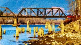Järnvägsbro över Fraser River mellan Abbotsford och beskickningen i British Columbia, Kanada royaltyfri foto