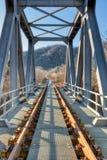 Järnvägsbro i metall royaltyfri foto