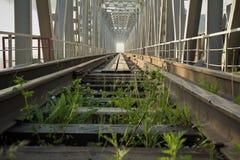 Järnvägsbro till och med floden Yenisei Royaltyfri Fotografi
