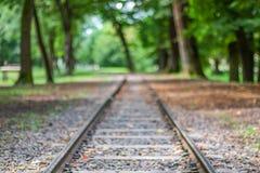 Järnvägspår, i skogen royaltyfria bilder