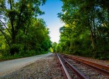 Järnvägspår längs den nordliga centrala järnvägen skuggar i York County arkivbild
