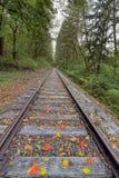 Järnvägspår med lodlinje för nedgånglövverk Royaltyfri Foto
