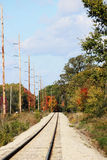 Järnvägspår och nedgångträd Royaltyfria Bilder