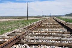 Järnvägspår som är offcenter med marklöparen royaltyfria bilder