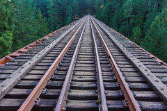 Järnvägspår som applicerar in i vildmarken Arkivfoto
