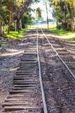 Järnvägspår som kör till och med parkera Royaltyfri Foto