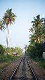 Järnvägsspår i djungeln Sri Lanka royaltyfria bilder