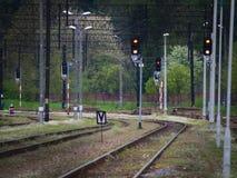 Järnvägsspår, ljus och tecken, stänger och grönt gräs Royaltyfria Bilder