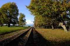 Järnvägsspår Morrinsville Nya Zeeland Arkivfoto