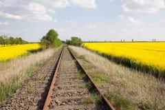 Järnvägsspår och guling våldtar fält Royaltyfri Bild