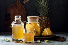 Jäst mexikansk ananas Tepache Hemlagat rått kombuchate med ananas Sund naturlig probiotic smaksatt drink royaltyfri bild
