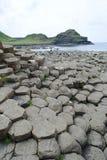 Jättar som causewayen vaggar, texturerar, Irland. Royaltyfri Bild