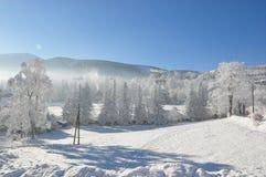 Jätte- berg/Karkonosze, Karpacz vinter Fotografering för Bildbyråer