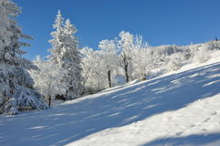 Jätte- berg/Karkonosze, Karpacz vinter Arkivbilder