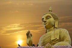 Jätte buddha på soluppgång Arkivbild