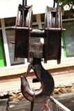 Jätte- carabiner Royaltyfri Bild