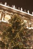 Jätte- christmastree Arkivbilder