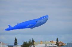 Jätte- drakeflyg för blått val ovanför vinden på vattenfestivalen royaltyfria foton