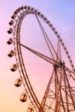 Jätte- ferrishjul på solnedgången fotografering för bildbyråer