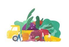 Jätte- frukter och grönsaker, lastbil och grupp av mycket litet folk, jordbruks- arbetare eller bönder som isoleras på vit royaltyfri illustrationer