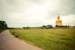 Jätte- guld- buddha staty på Wat muang, Thailand Arkivfoto