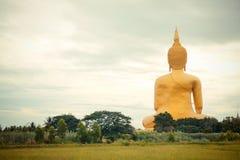 Jätte- guld- buddha staty på Wat muang, Thailand Arkivfoton