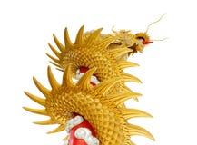Jätte- guld- kinesisk drake på isolatvitbakgrund Fotografering för Bildbyråer