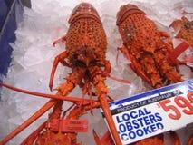 Jätte- hummer som är till salu i fiskmarknad Arkivbild