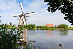 jätte- Nederländerna Arkivbilder
